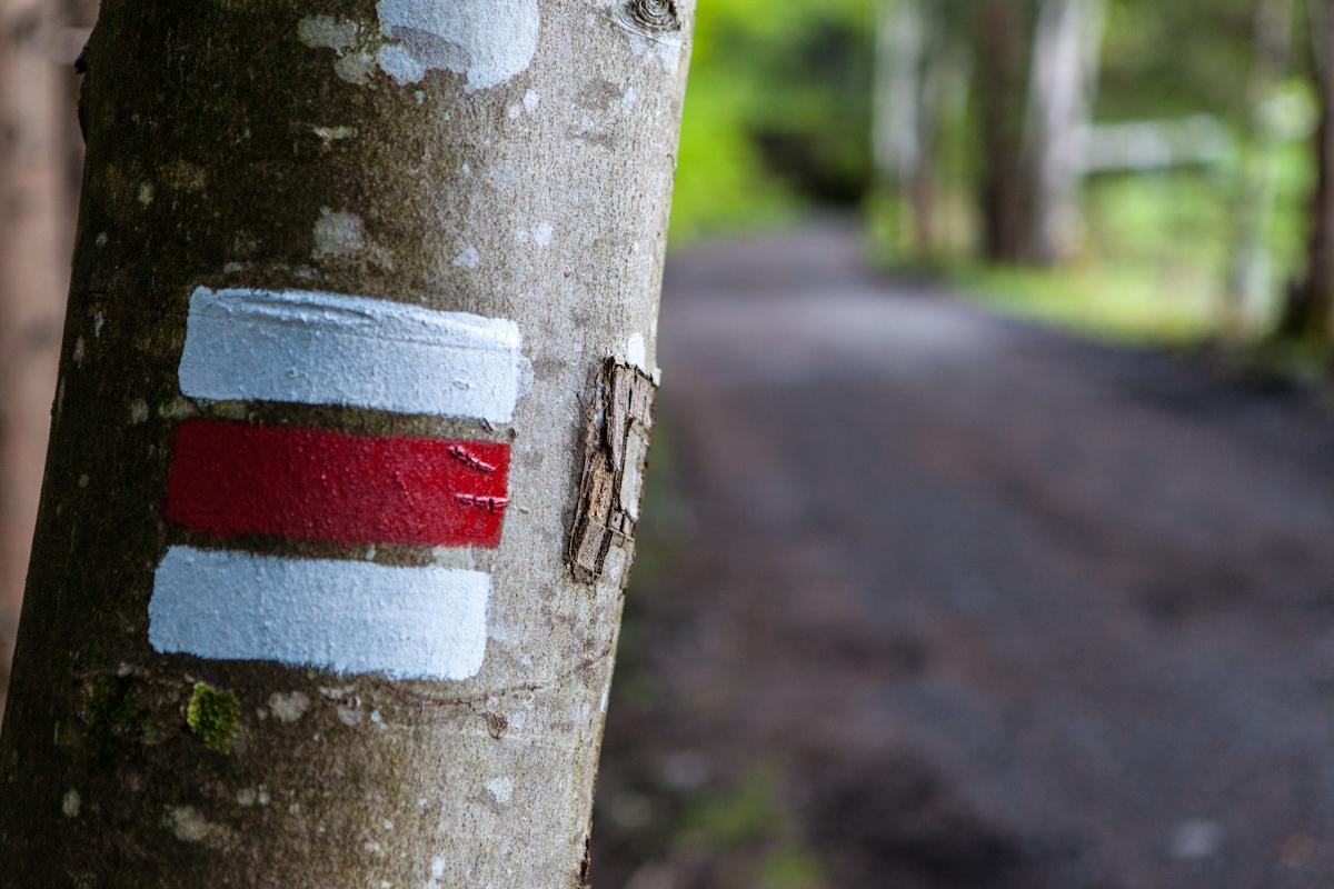 Bürser Schlucht Trail