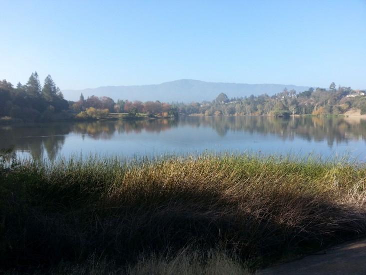 Vasona County Park
