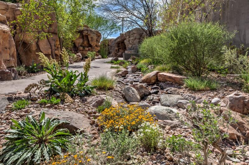 Springs Preserve