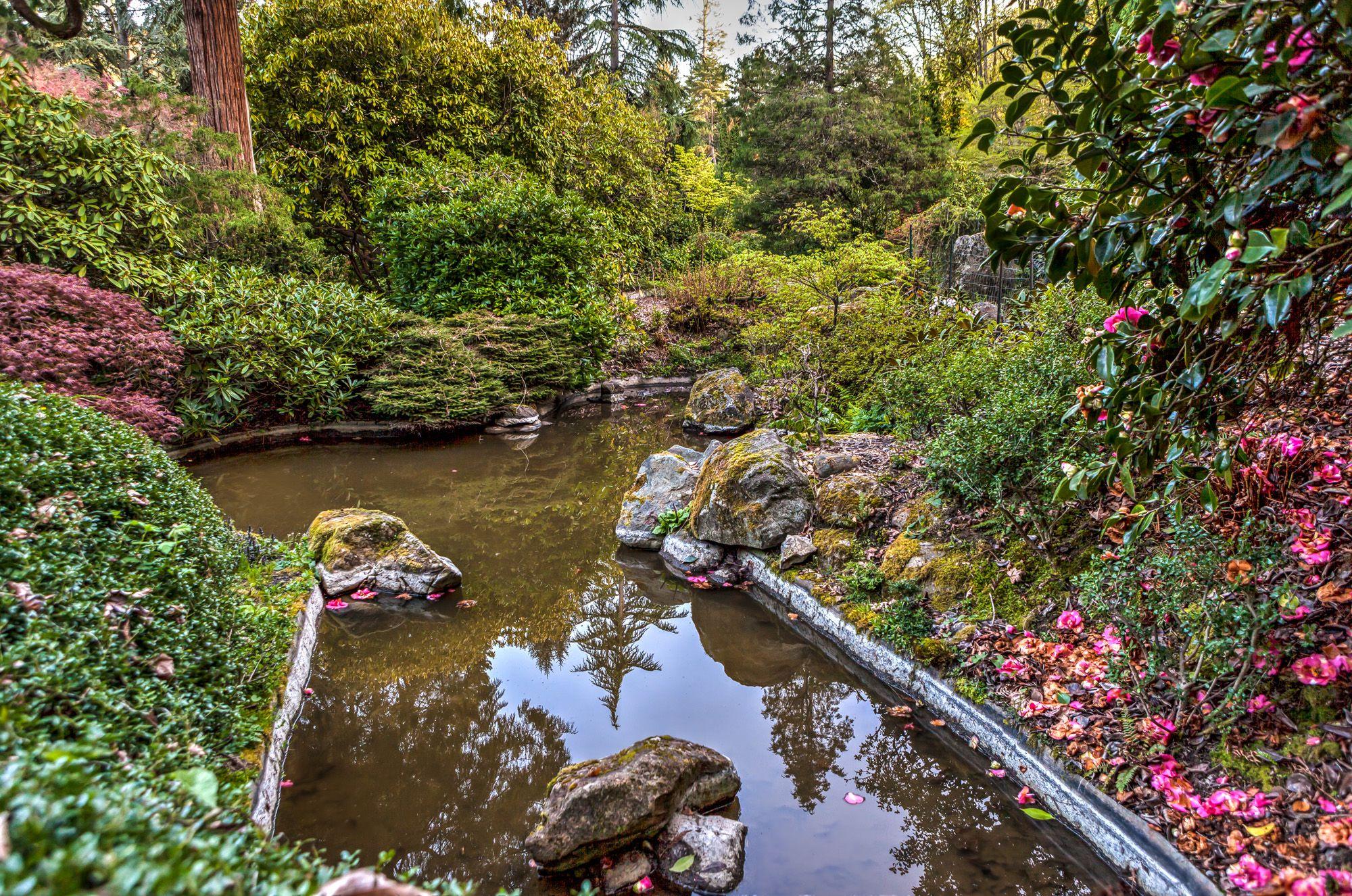 Kubota Garden - An amazing Japanese Garden in Seattle - Gate to ...