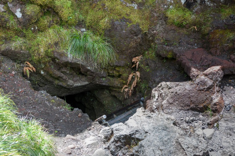 Upper Exit of the Ape Cave