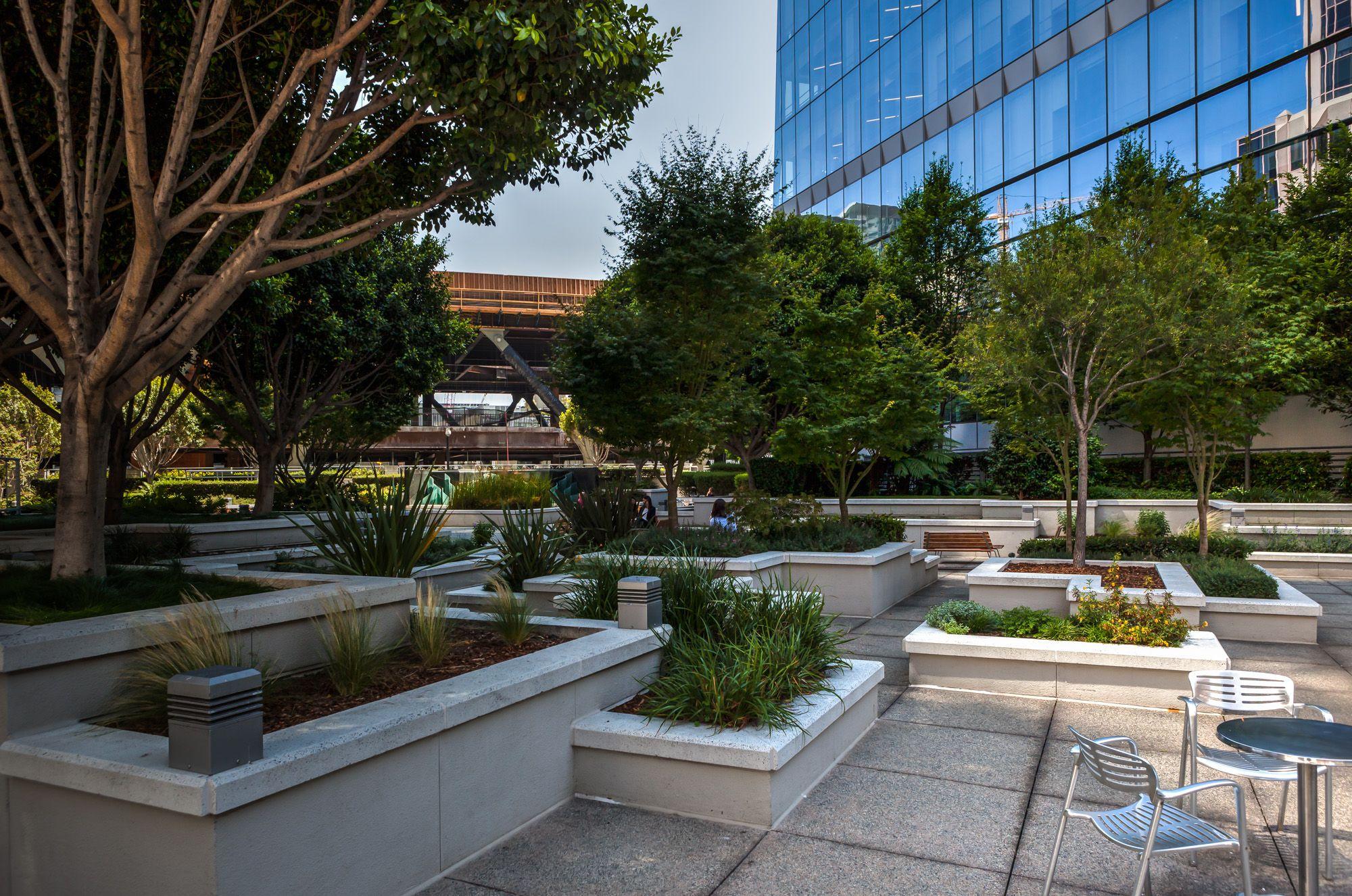 San Francisco 39 S Hidden Rooftop Gardens The Complete List