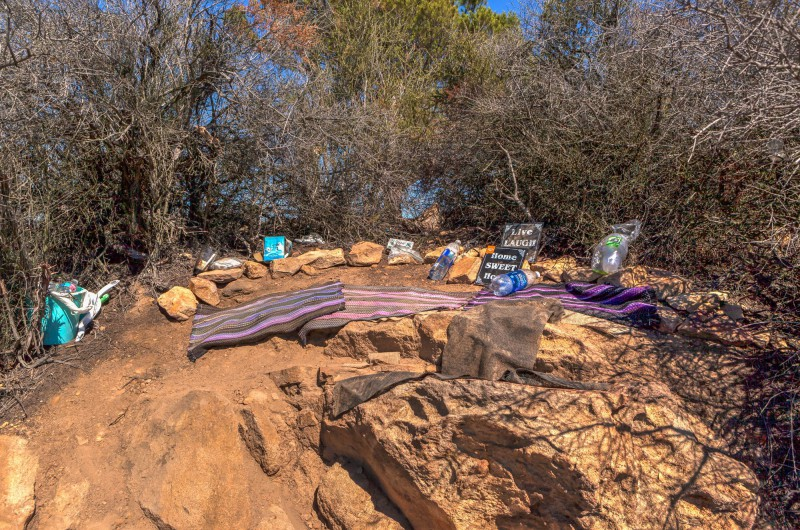 Hidden Camp near the Tree of Life